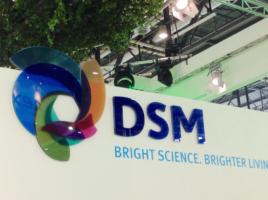 DSM (Foto: Health Gauge)